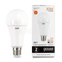 Лампа светодиодная Led Elementary A67 30Вт E27 3000К Gauss 73219